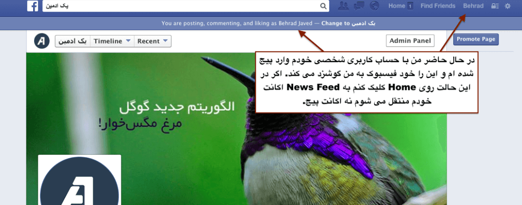 Facebook_Page_and_Profile_Integration_03