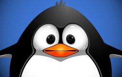 penguin-generic2-ss-1920-800x450